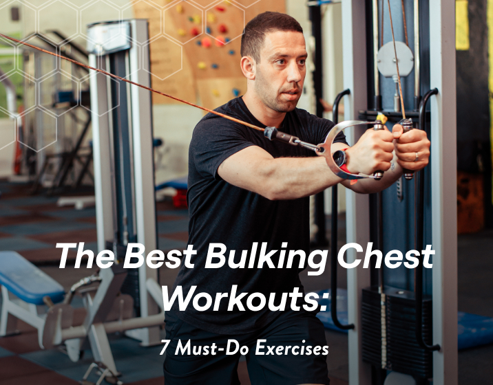 the best bulking chest workouts
